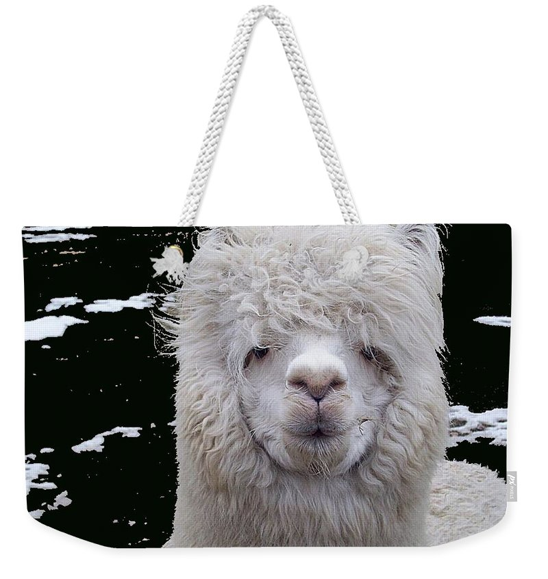Alpaca Weekender Tote Bag featuring the digital art Wild Life by Robert Orinski