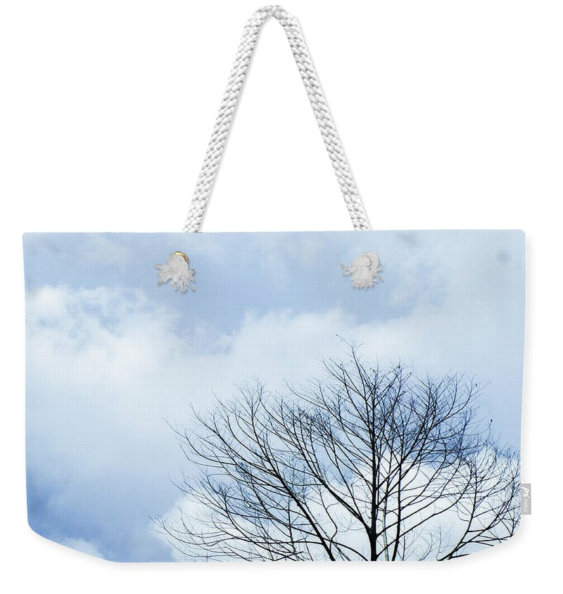 Winter Fall White Sky Weekender Tote Bag featuring the photograph Winter Tree by Adelista J