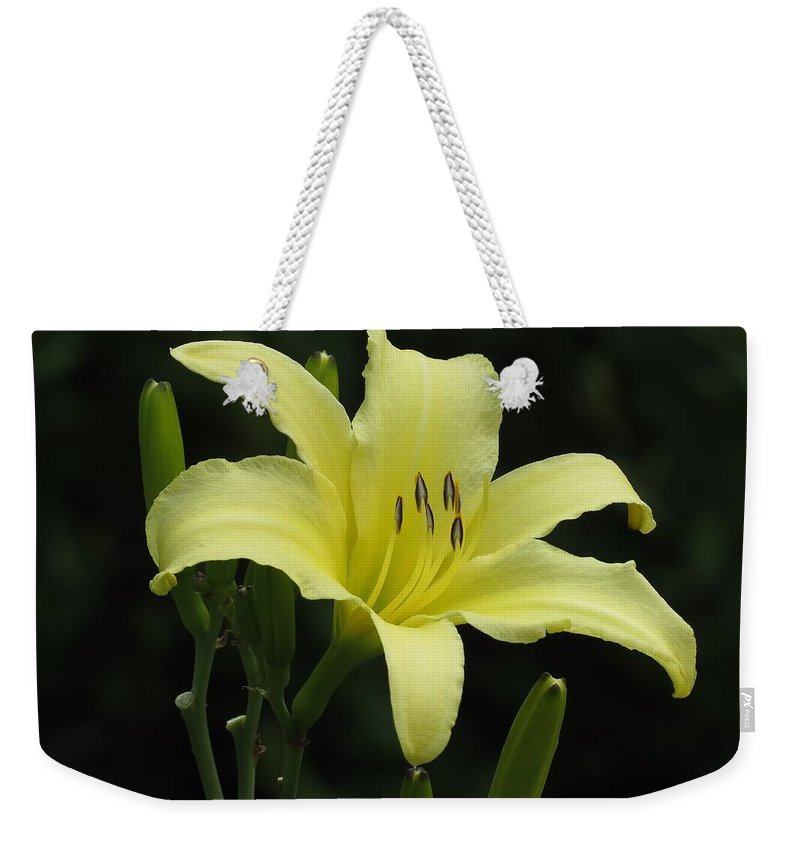 Daylily Weekender Tote Bag featuring the photograph Yellow Bloom by MTBobbins Photography