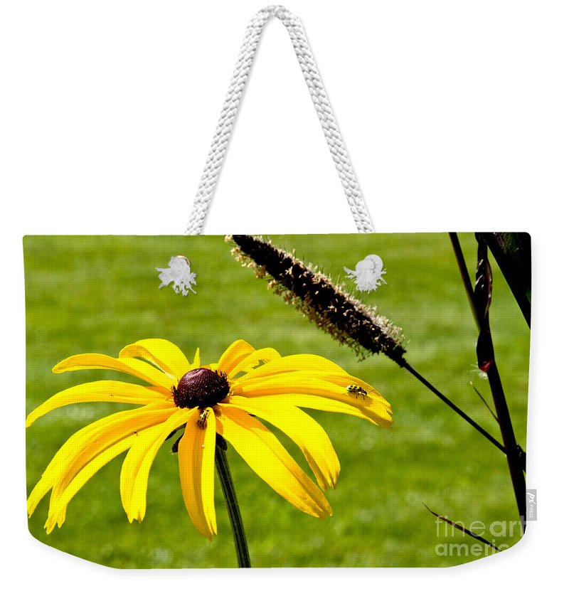 Daisy Weekender Tote Bag featuring the photograph 1 Yellow Daisy 2 Yellow Bugs by Andee Design