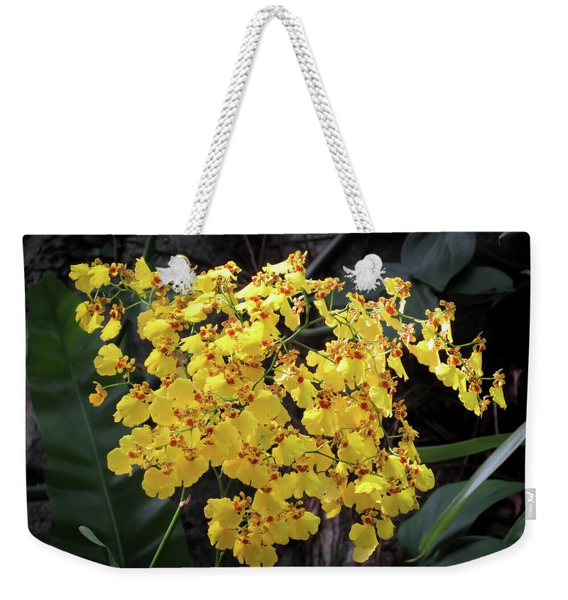 Orchid Weekender Tote Bag featuring the photograph Yellow Orchids by Zina Stromberg