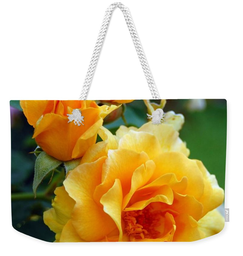 Flower Weekender Tote Bag featuring the photograph Yellow Roses by Amy Fose