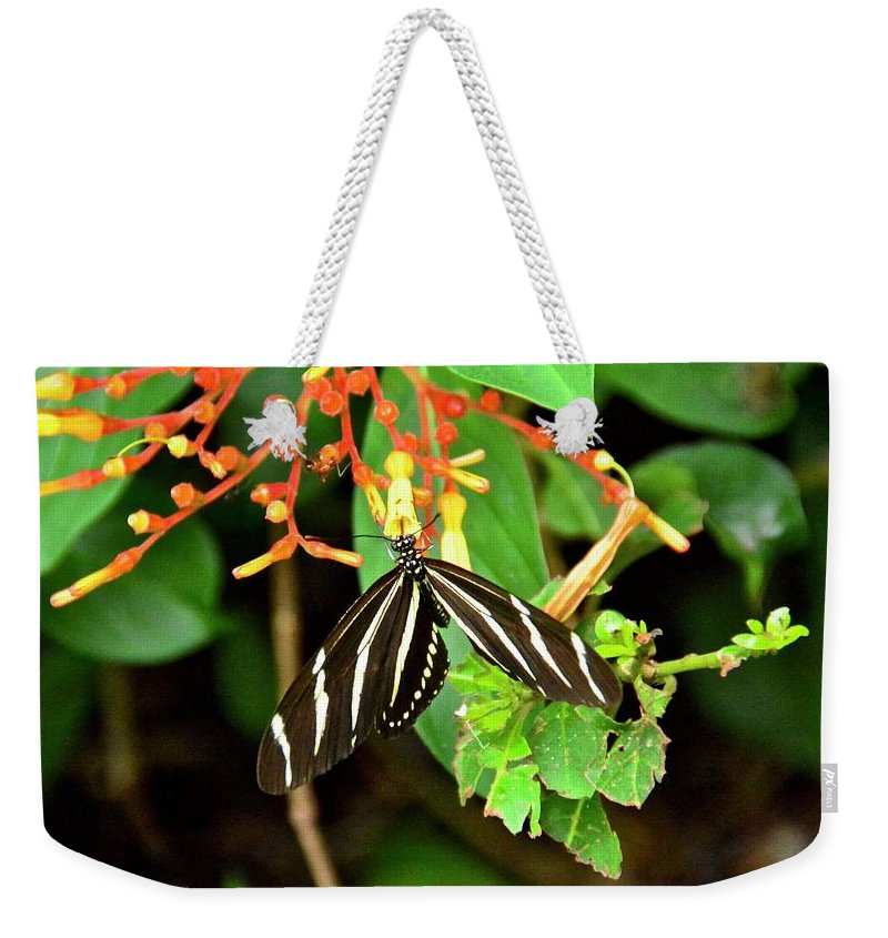 Firebush Weekender Tote Bag featuring the photograph Zebra Longwing On Firebush by Carol Bradley
