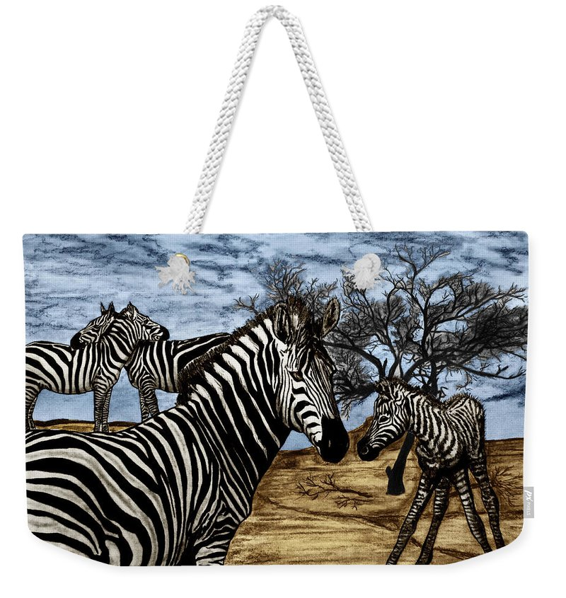 Zebra Outback Weekender Tote Bag featuring the drawing Zebra Outback by Peter Piatt