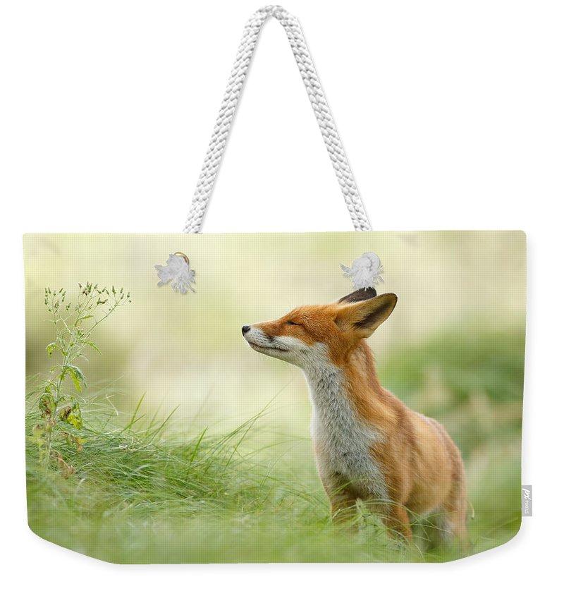 Fox Weekender Tote Bag featuring the photograph Zen Fox Series - Zen Fox by Roeselien Raimond