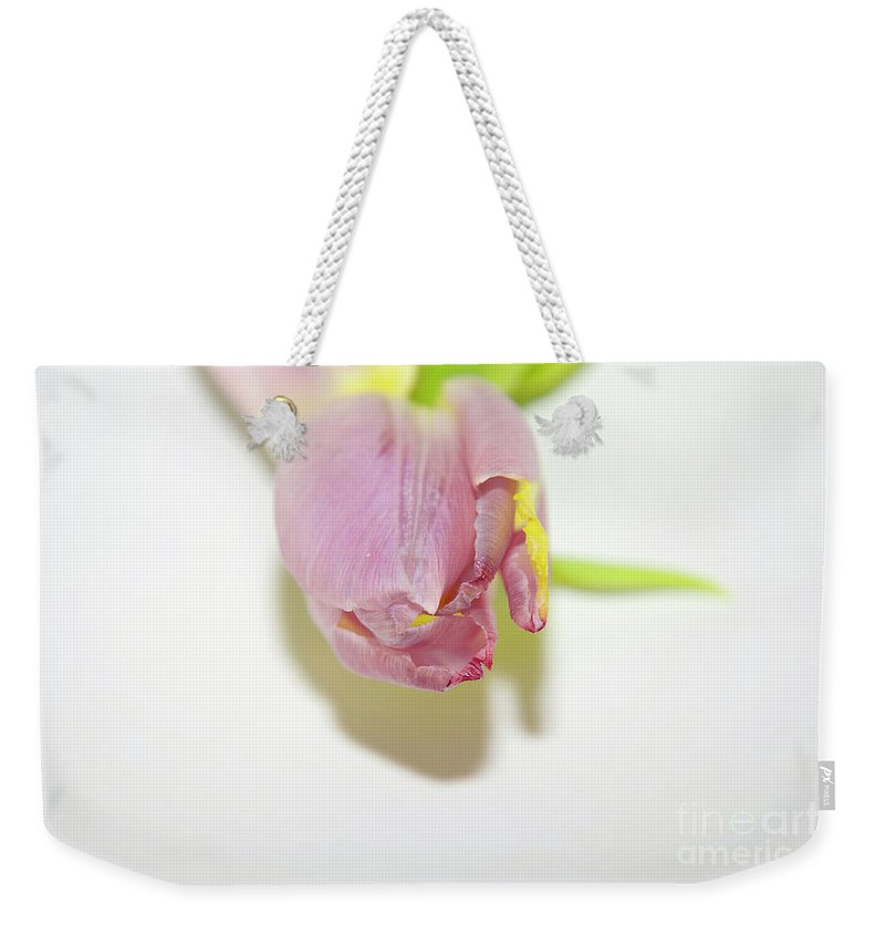 Flowers Weekender Tote Bag featuring the photograph Beautiful Tulip by Elvira Ladocki