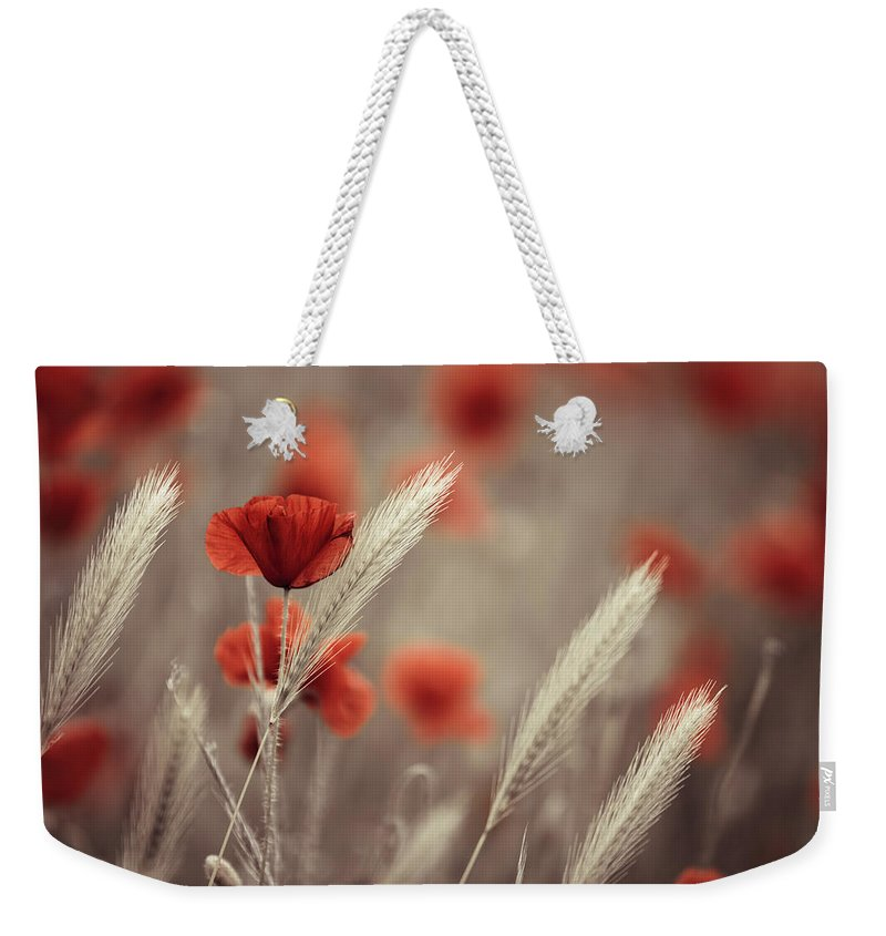 Poppy Weekender Tote Bag featuring the photograph Summer Poppy Meadow 11 by Nailia Schwarz