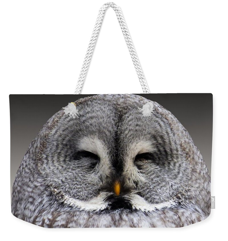 Wise Weekender Tote Bag featuring the photograph Owl by FL collection