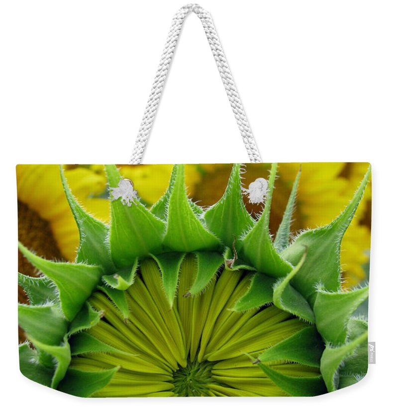 Sunflwoers Weekender Tote Bag featuring the photograph Sunflower Series by Amanda Barcon