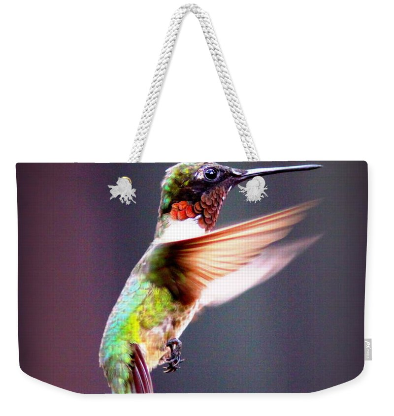 1257-006 Weekender Tote Bag featuring the photograph 1257-006 - Ruby-throated Hummingbird by Travis Truelove