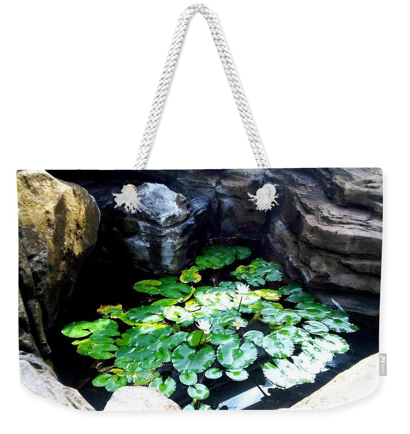 Photo Weekender Tote Bag featuring the photograph Brooklyn Garden by Lord Frederick Lyle Morris