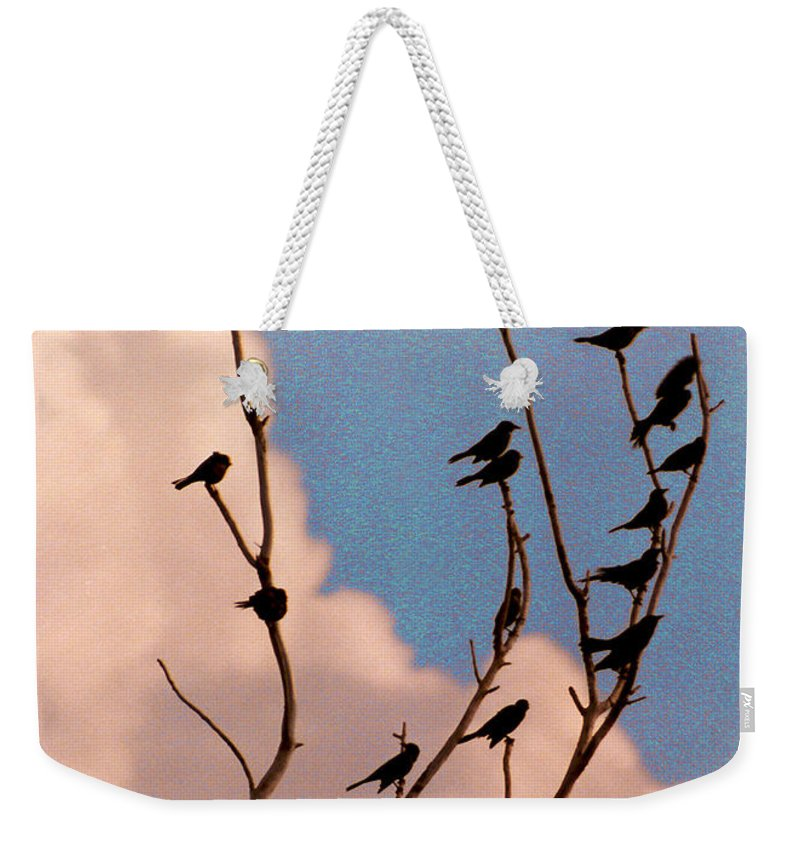 Birds Weekender Tote Bag featuring the photograph 19 Blackbirds by Steve Karol