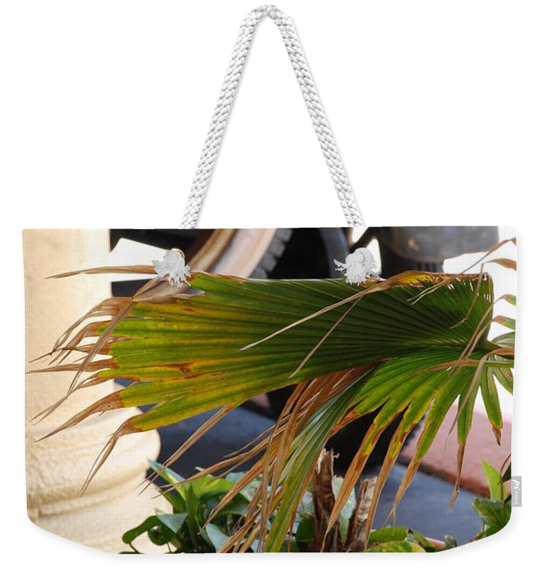 Ford Weekender Tote Bag featuring the photograph 1926 Model T And Plants by Rob Hans
