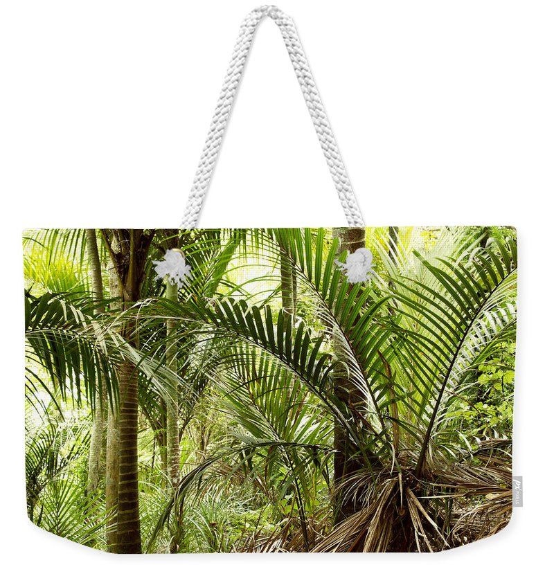 Rain Forest Weekender Tote Bag featuring the photograph Jungle 94 by Les Cunliffe