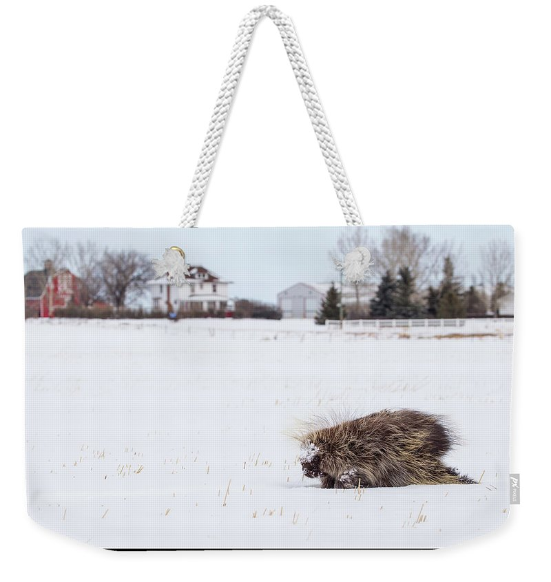 Weekender Tote Bag featuring the photograph 1k by J and j Imagery
