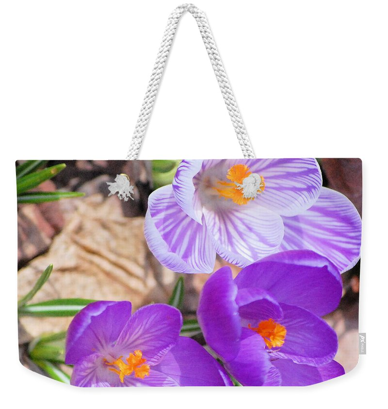 Digital Photography Weekender Tote Bag featuring the photograph 1st Flower In Garden 2010 Photo by David Lane