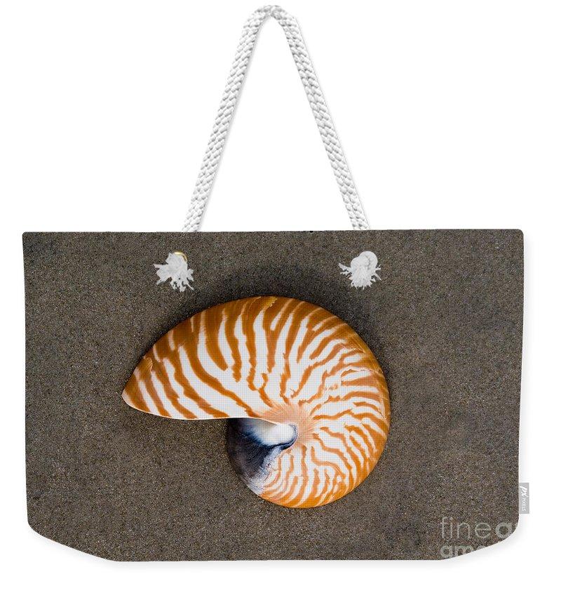 Nautilus Weekender Tote Bag featuring the photograph Bellybutton Nautilus - Nautilus Macromphalus by Anthony Totah