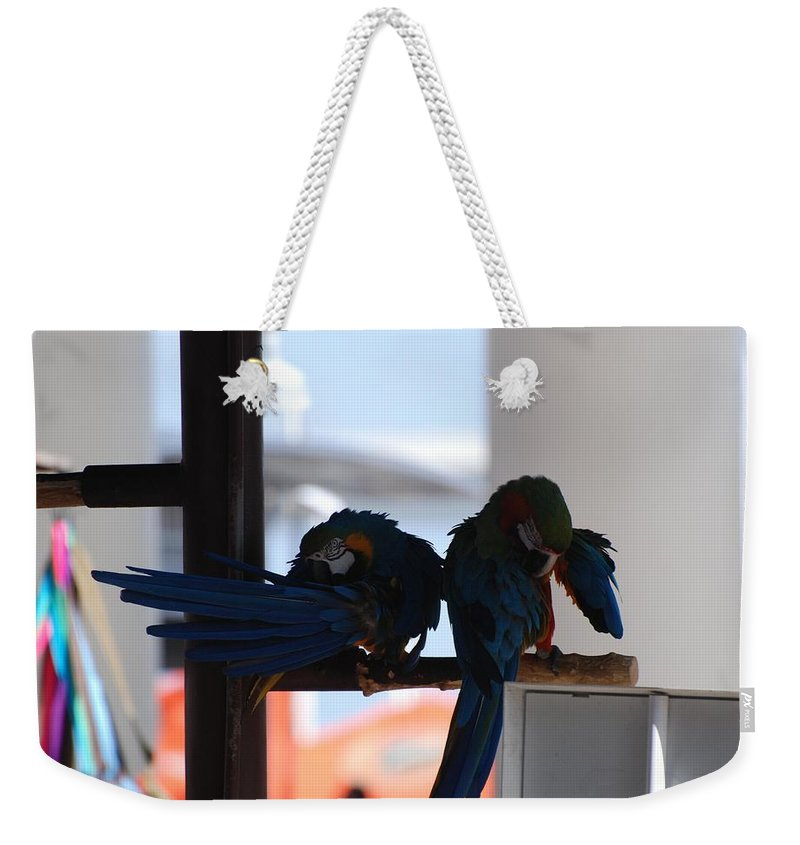 Mac Caw Weekender Tote Bag featuring the photograph 2 Birds by Rob Hans