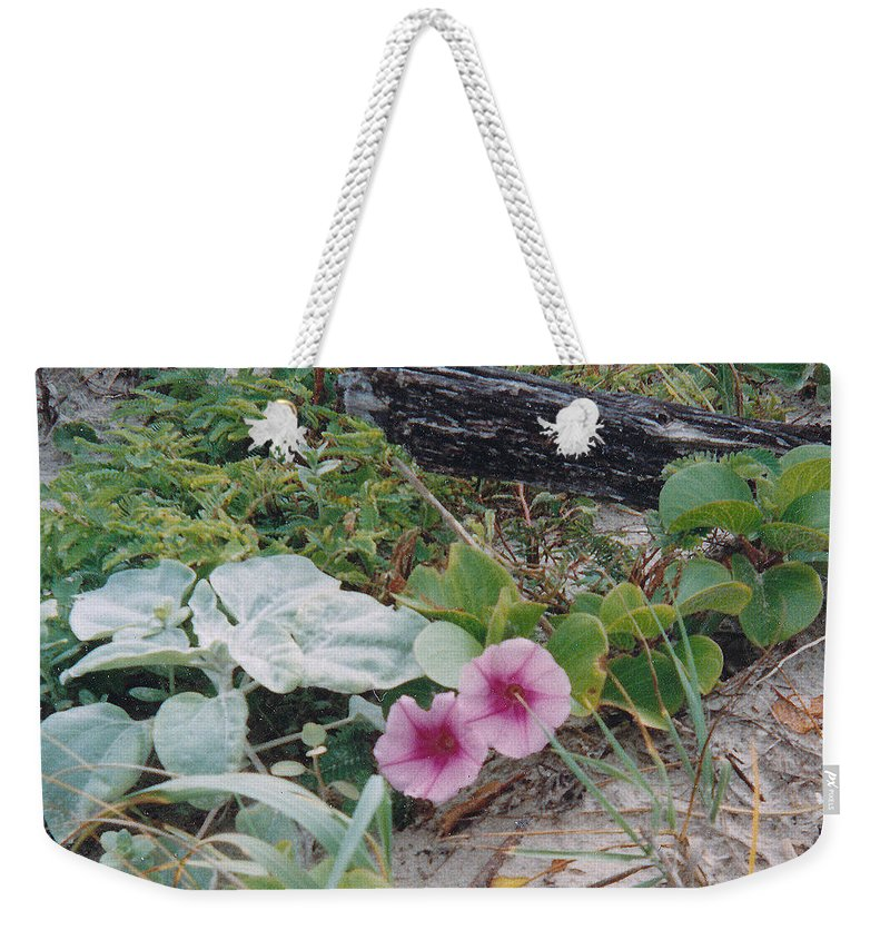 Morning Glory Flowers Beach Plants Sand Weekender Tote Bag featuring the photograph 2 Blooms by Cindy New