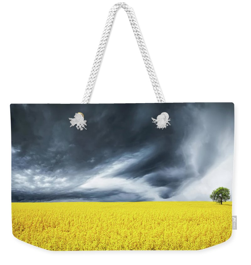 Hello Bessi Weekender Tote Bag featuring the photograph Canola Field by Bess Hamiti