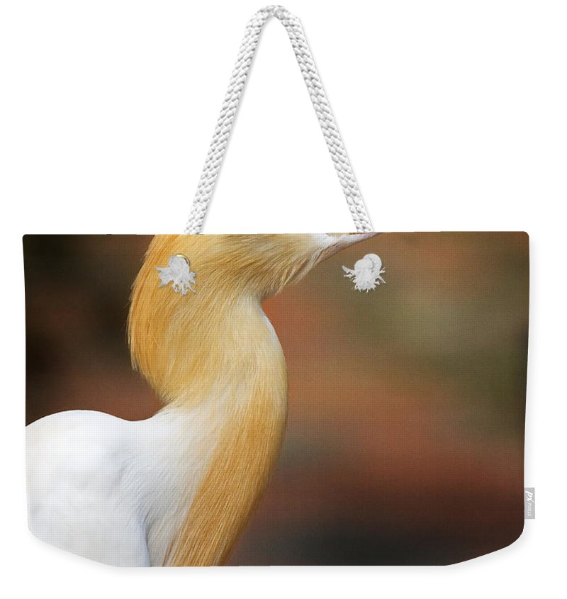 Bird Weekender Tote Bag featuring the photograph Cattle Egret by Louise Heusinkveld