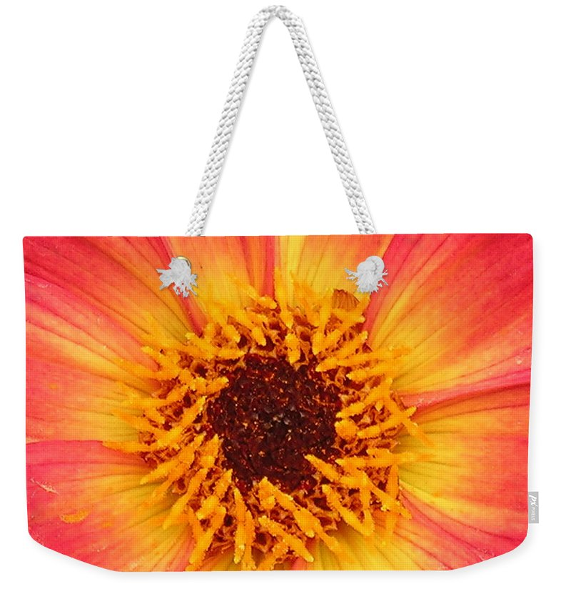 Flower Weekender Tote Bag featuring the photograph Flower by Diane Greco-Lesser