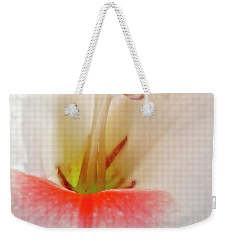 Gladiolus Weekender Tote Bag featuring the photograph Gladiolus by Heiko Koehrer-Wagner