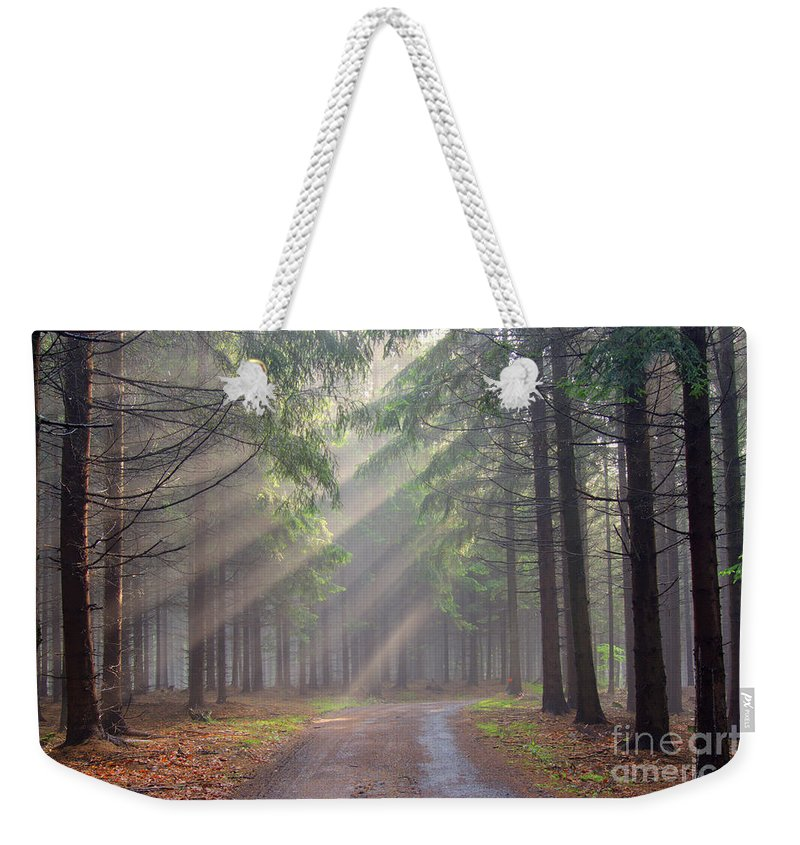 Forest Weekender Tote Bag featuring the photograph God Beams - Coniferous Forest In Fog by Michal Boubin