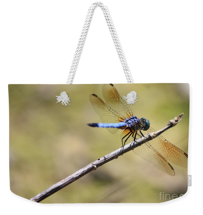 Dragonfly Weekender Tote Bag featuring the photograph Golden Wings by Carol Groenen