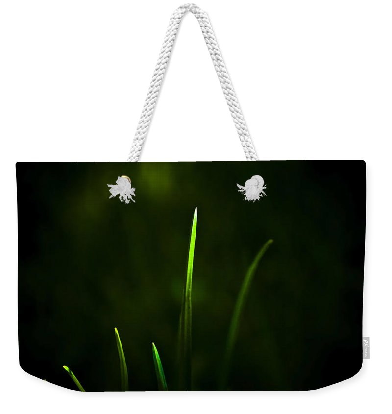 Grass Weekender Tote Bag featuring the photograph Grass by Svetlana Sewell