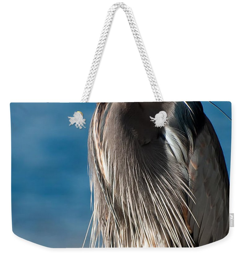 Bird Weekender Tote Bag featuring the photograph Great Blue Heron by Rich Leighton