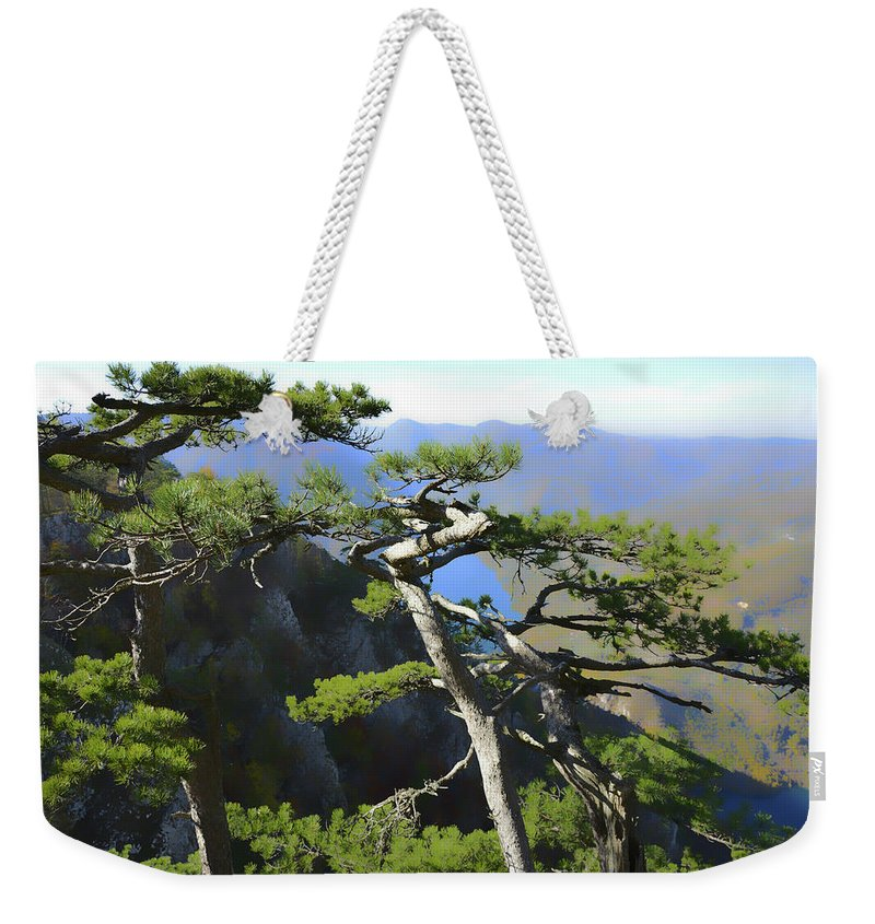 Lake Weekender Tote Bag featuring the photograph Look At The Pine Trees And The Lake by Predrag Lukic
