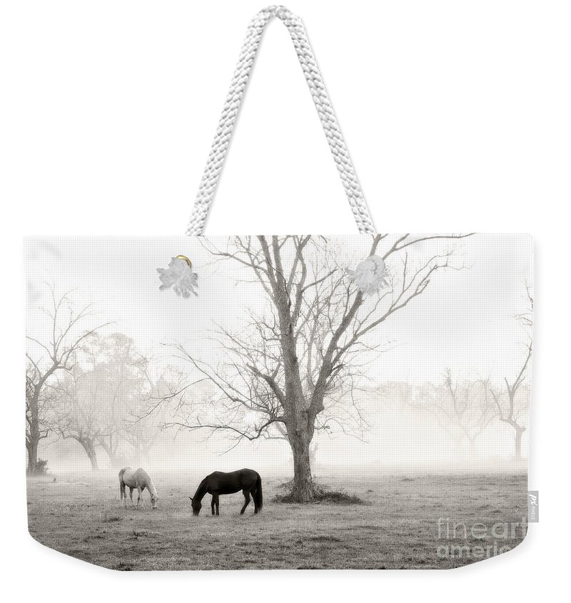 Magical Morning Weekender Tote Bag featuring the photograph Magical Morning by Scott Pellegrin