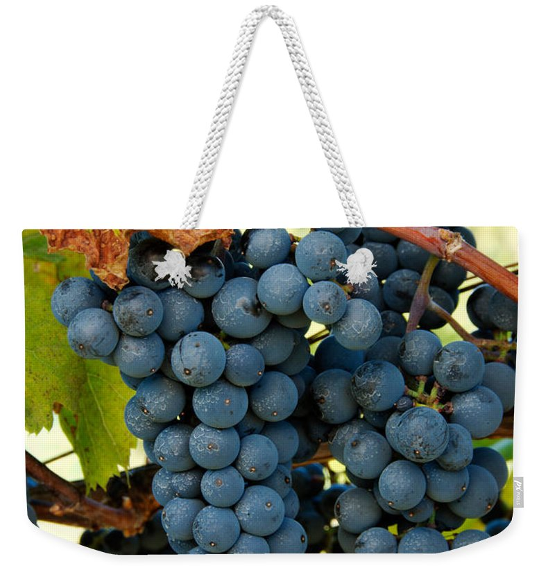 Grapes Weekender Tote Bag featuring the photograph Marechal Foch Grapes by George Mattei