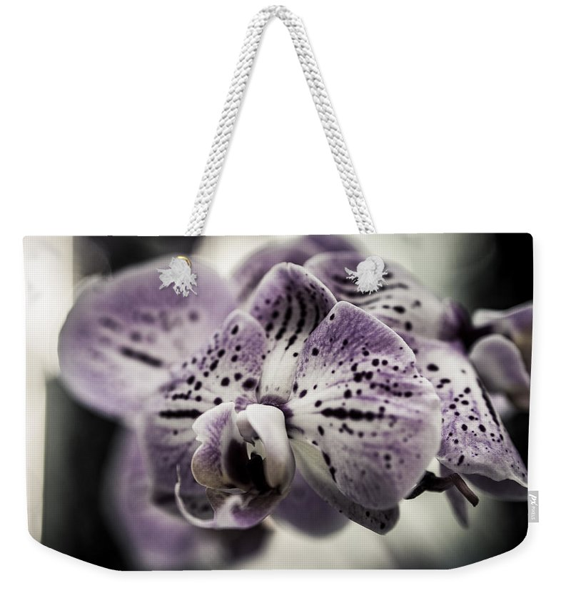 Beautiful Weekender Tote Bag featuring the photograph Morning Sunshine by Miguel Winterpacht