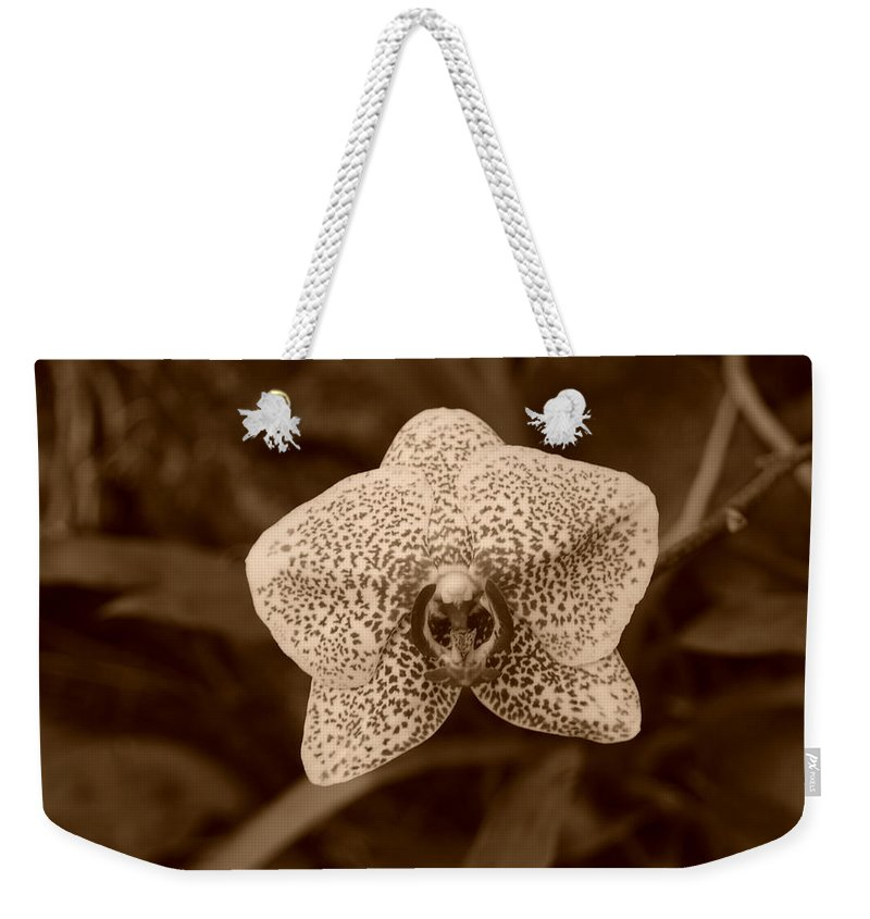 Macro Weekender Tote Bag featuring the photograph Orchid by Rob Hans