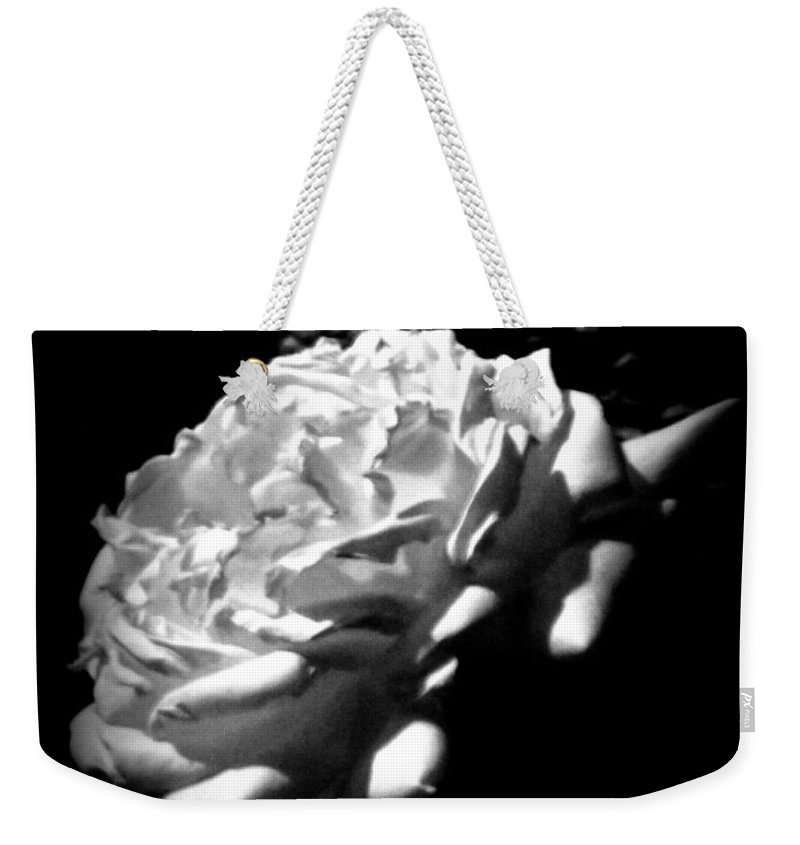 Diane M Dittus Weekender Tote Bag featuring the photograph Roses In Moonlight 4 by Diane M Dittus