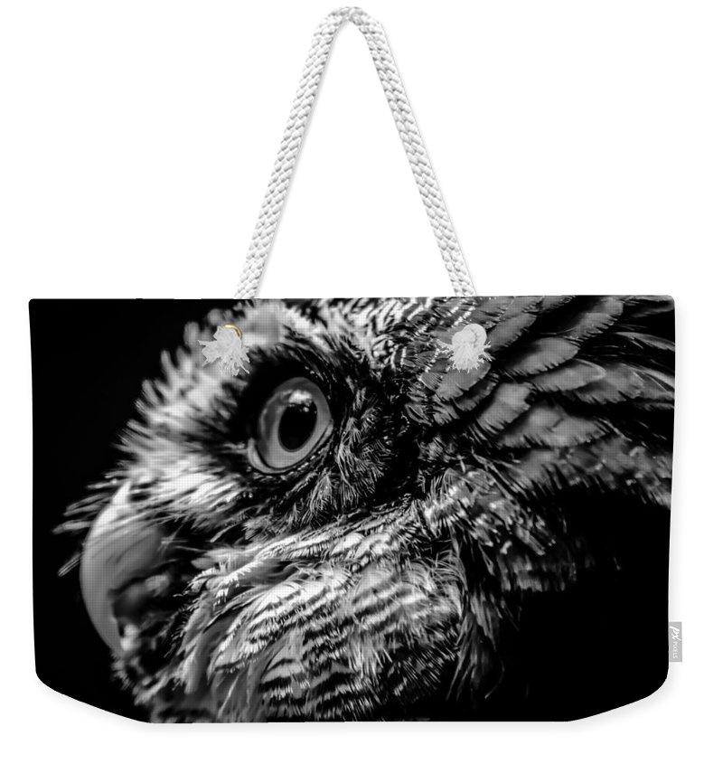 Animal Weekender Tote Bag featuring the photograph Spectacled Owl by Alex Grichenko