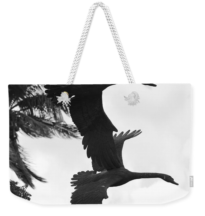 Black And White Weekender Tote Bag featuring the photograph Stone Birds by Rob Hans