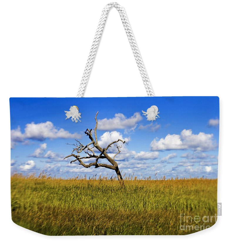 Tree Weekender Tote Bag featuring the photograph The Last One Standing by Scott Pellegrin