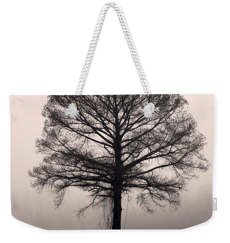 Trees Weekender Tote Bag featuring the photograph The Tree by Amanda Barcon