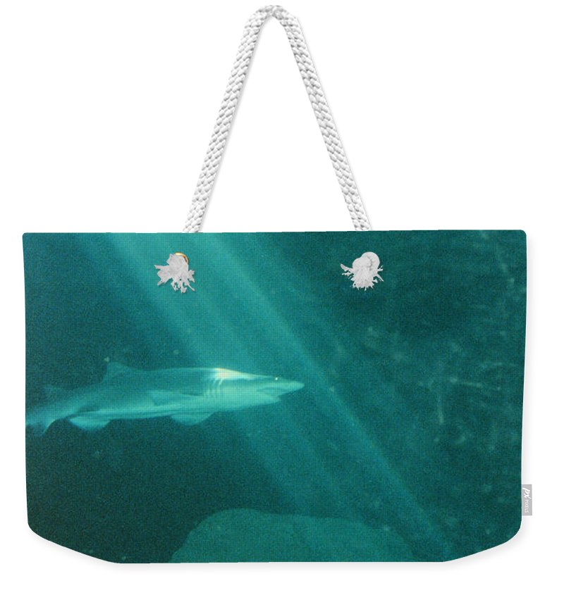 Sharks Weekender Tote Bag featuring the photograph Close Encounters by Jeffery L Bowers