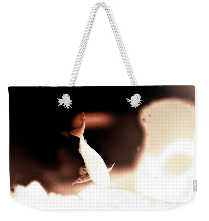Weekender Tote Bag featuring the photograph Untitled by Ilaria Andreucci