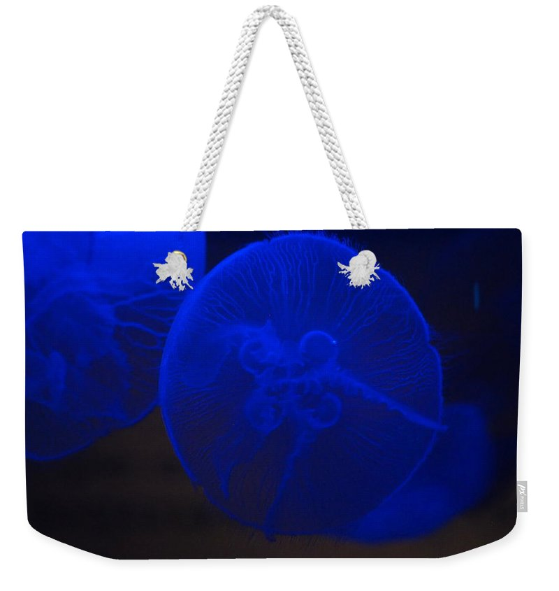 Vancouver Aquarium Weekender Tote Bag featuring the photograph 23-01-17 by Darrell MacIver
