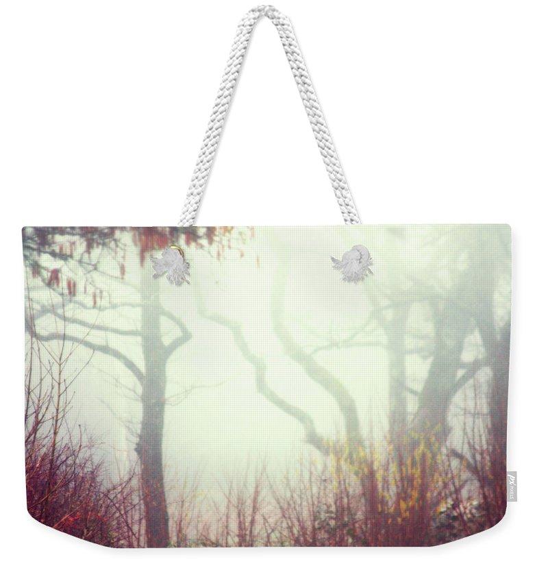 Fog Weekender Tote Bag featuring the digital art Nature by Frances Lewis