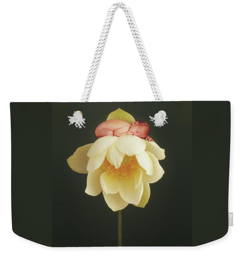 Designs Similar to Lotus Bud by Anne Geddes
