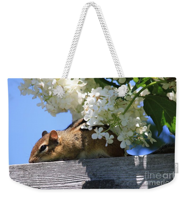 Mccombie Weekender Tote Bag featuring the photograph Chipmunk Chillin' On The Railin' by J McCombie