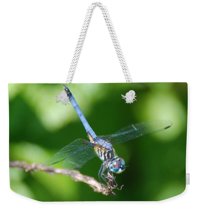 Dragonfly Weekender Tote Bag featuring the photograph Dragon Fly by Rob Hans