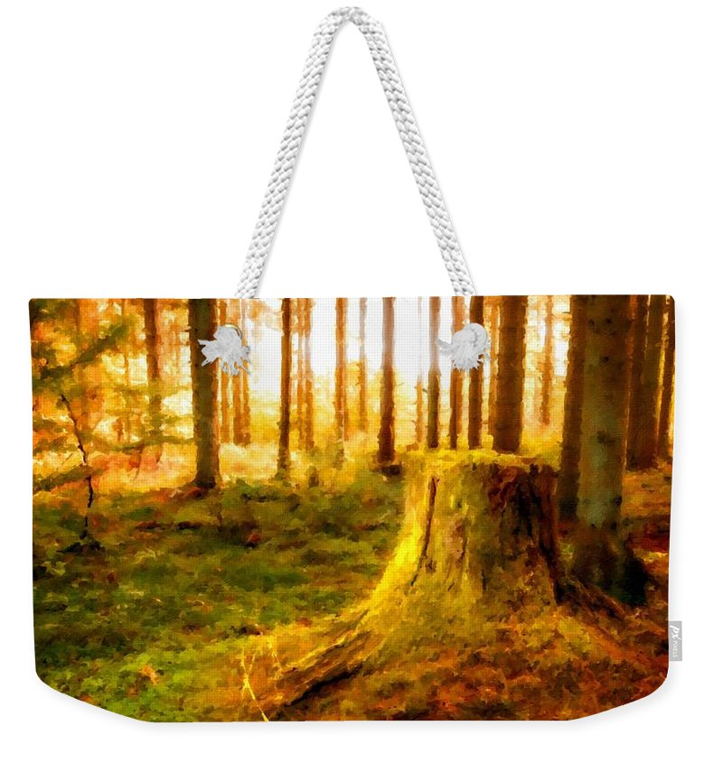 P Weekender Tote Bag featuring the digital art Drawings Landscapes by Usa Map