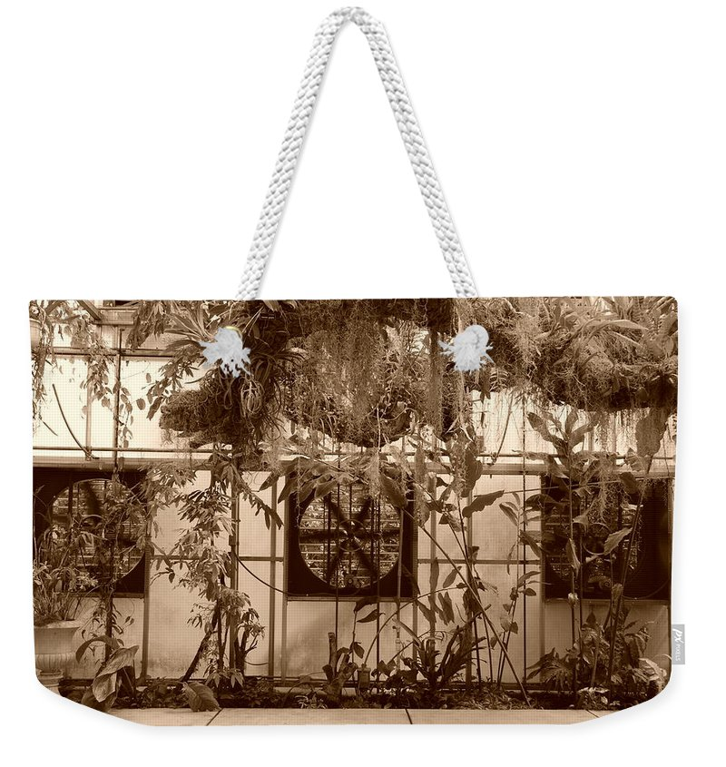Vent Weekender Tote Bag featuring the photograph 3 Fans And Vines by Rob Hans